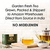 Tisana de té de hierbas de jengibre cítrico (100 tazas)| infusiones | TÉ DETOXO...